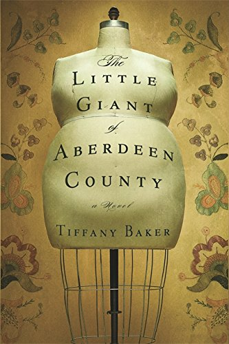 9780446194204: The Little Giant of Aberdeen County