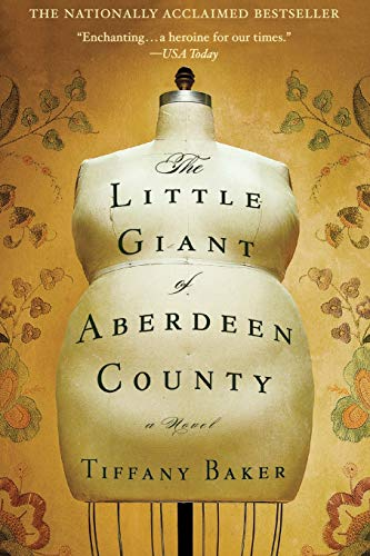 9780446194228: The Little Giant of Aberdeen County