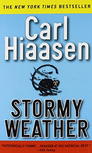 9780446603423: Stormy Weather