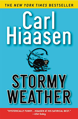 9780446677165: Stormy Weather
