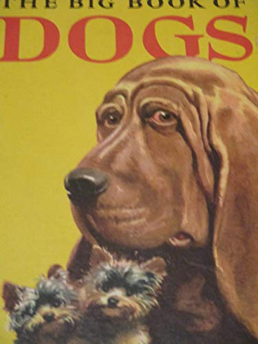 9780448036748: Big Book of Dogs