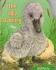 The Ugly Duckling (Pudgy Pals): Ogden