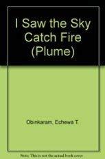 9780452269491: I Saw the Sky Catch Fire (Plume Contemporary Fiction)