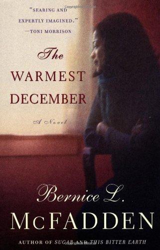 9780452282919: The Warmest December
