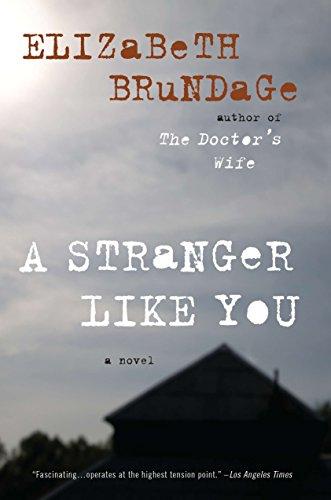 9780452297098: A Stranger Like You: A Novel