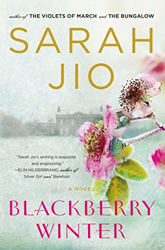 9780452298385: Blackberry Winter: A Novel
