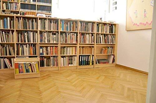 9780460872089: Hindu Scriptures (Everyman's Library)