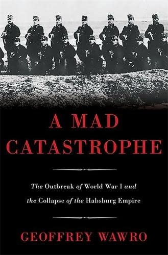 9780465028351: A Mad Catastrophe: The Outbreak of World War I and the Collapse of the Habsburg Empire