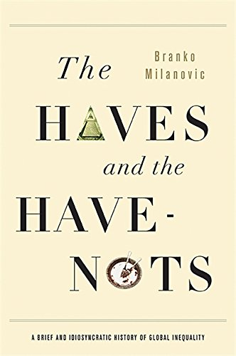9780465031412: The Haves and the Have-Nots: A Brief and Idiosyncratic History of Global Inequality
