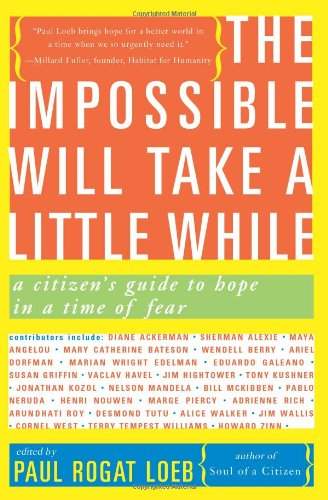 9780465041664: The Impossible Will Take a Little While: A Citizen's Guide to Hope in a Time of Fear