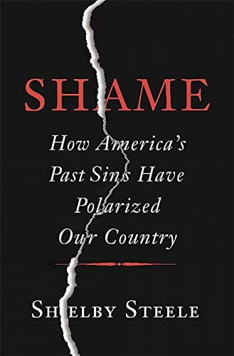 9780465066971: Shame: How America's Past Sins Have Polarized Our Country