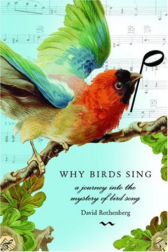 Why Birds Sing: A Journey Through the Mystery of Bird Song: Rothenberg, David