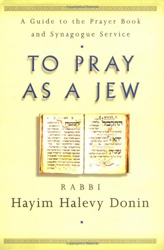 9780465086283: To Pray As a Jew: A Guide to the Prayer Book and the Synagogue Service