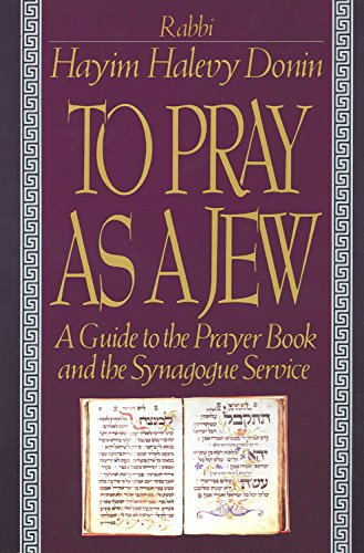 9780465086337: To Pray As a Jew: A Guide to the Prayer Book and the Synagogue Service