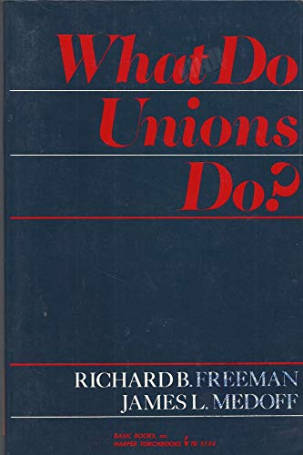9780465091324: What Do Unions Do