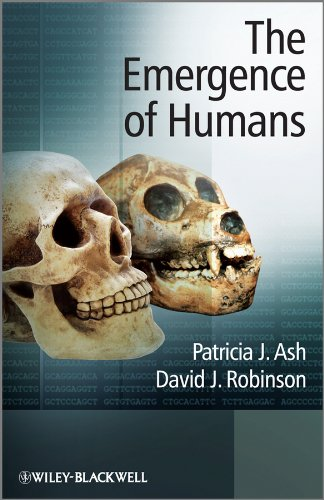 9780470013137: The Emergence of Humans: An Exploration of the Evolutionary Timeline
