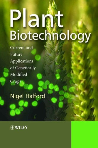 9780470021811: Plant Biotechnology: Current and Future Applications of Genetically Modified Crops