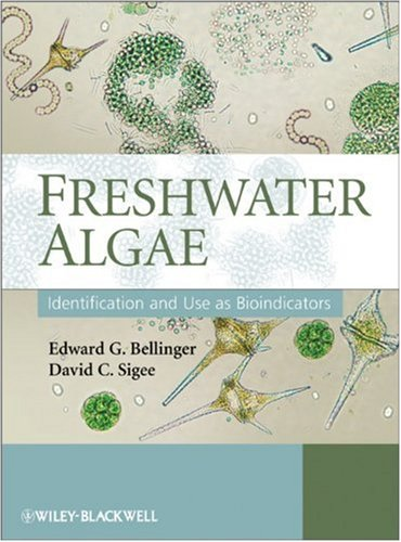 9780470058145: Freshwater Algae: Identification and Use as Bioindicators