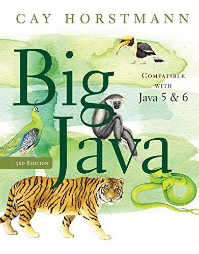 9780470105542: Big Java