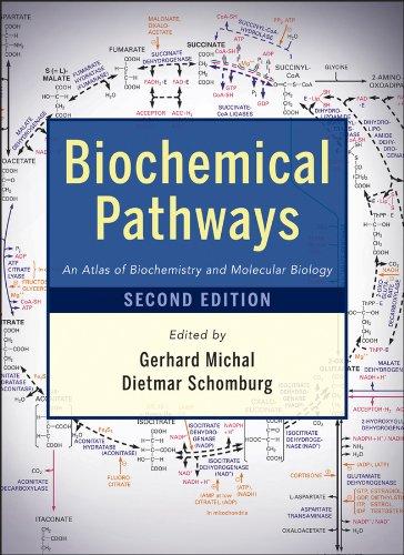 9780470146842: Biochemical Pathways: An Atlas of Biochemistry and Molecular Biology