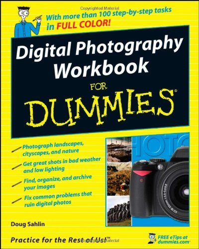 9780470259337: Digital Photography Workbook For Dummies