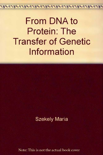 From DNA to protein: The transfer of genetic information