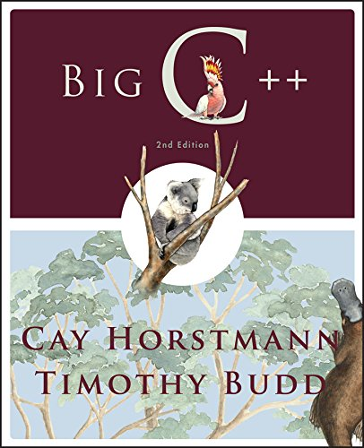 Big C++, 2nd Edition: Timothy Budd,Cay Horstmann