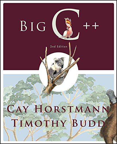 9780470383285: Big C++, 2nd Edition