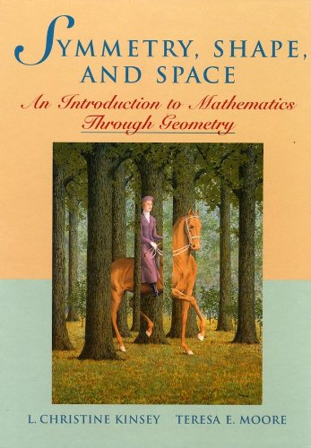 9780470412381: Symmetry, Shape, and Space: An Introduction to Mathematics Through Geometry