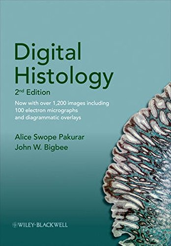 9780470475393: Digital Histology: An Interactive CD Atlas with Review Text