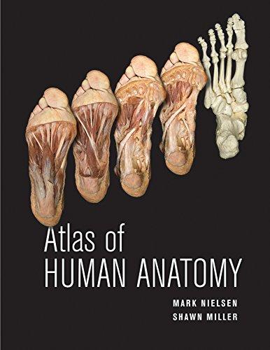 9780470501450: Atlas of Human Anatomy