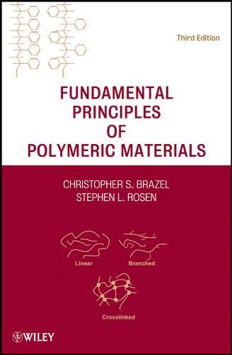 9780470505427: Fundamental Principles of Polymeric Materials