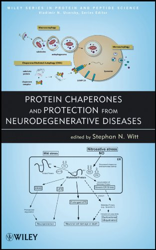 Protein Chaperones and Protection from Neurodegenerative Diseases, by Witt: Witt, Stephan N./ ...