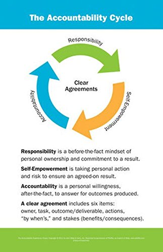 9780470604786: The Accountability Experience Poster