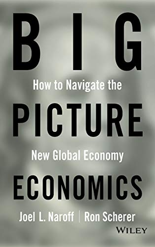 9780470641811: Big Picture Economics: How to Navigate the New Global Economy