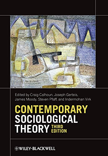 9780470655665: Contemporary Sociological Theory
