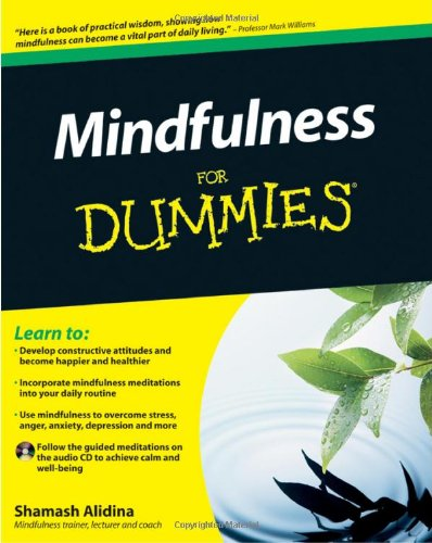 9780470660867: Mindfulness For Dummies (Book + CD)