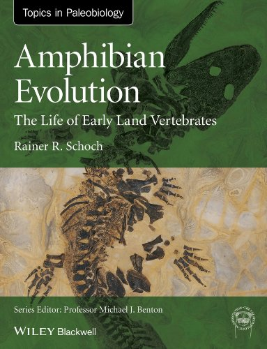 9780470671771: Amphibian Evolution: The Life of Early Land Vertebrates