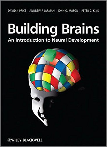 9780470712290: Building Brains