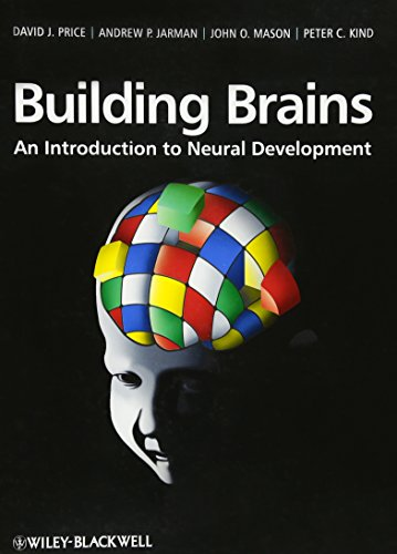 9780470712306: Building Brains: An Introduction to Neural Development