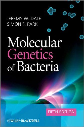 9780470741856: Molecular Genetics of Bacteria