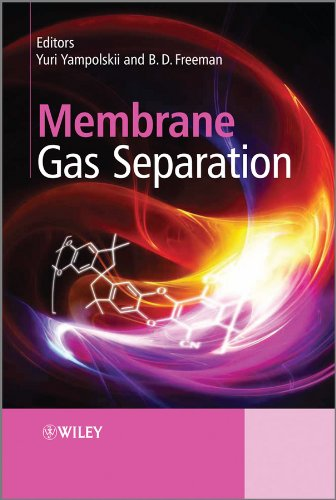 9780470746219: Membrane Gas Separation
