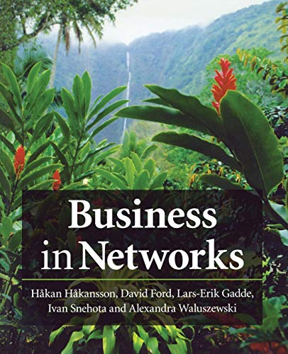 9780470749630: Business in Networks