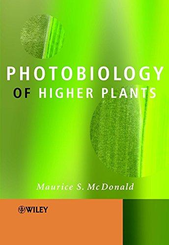 9780470855232: Photobiology of Higher Plants