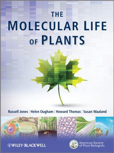 9780470870129: The Molecular Life of Plants