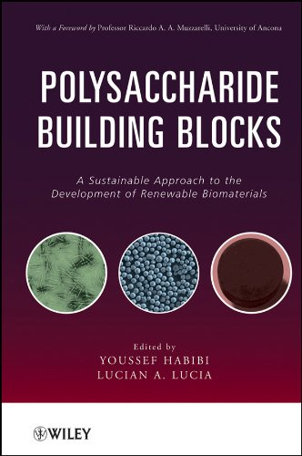 9780470874196: Polysaccharide Building Blocks: A Sustainable Approach to the Development of Renewable Biomaterials