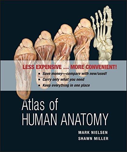 9780470917473: Atlas of Human Anatomy