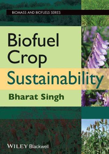 9780470963043: Biofuel Crop Sustainability