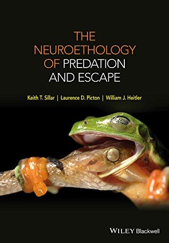 9780470972243: The Neuroethology of Predation and Escape