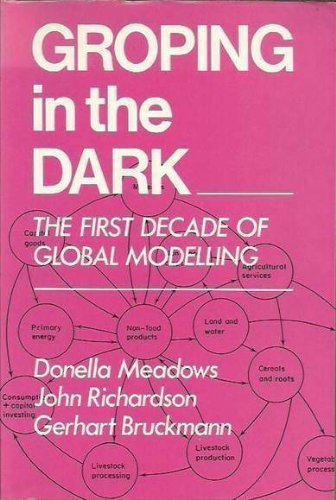 9780471100270: Groping in the Dark: First Decade of Global Modelling